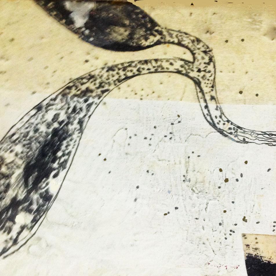 marion-llewellyn-gallery-drawing-5